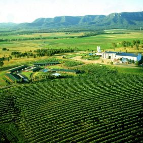 A Guide to Hunter Valley Wine Tasting and Tours