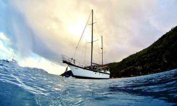 Book Whitsundays Cruises & Island Sailing Adventures